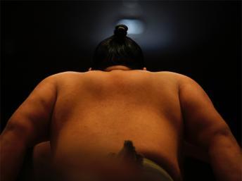 sumo japon ok_0